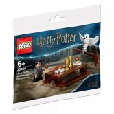 Harry Potter and Hedwig: Owl Delivery (polybag)